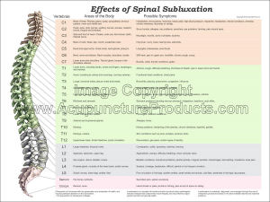 """Sclerotome Visceral Pain Referral Poster 18/"""" X 24/"""" Chiropractic Chart"""