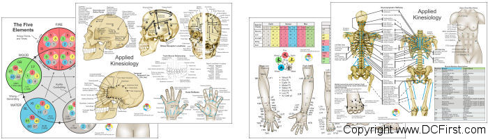 Applied Kinesiology Chart Set